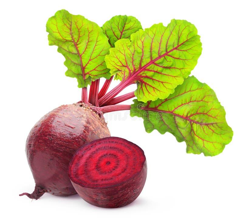 Download 甜菜根 库存图片. 图片 包括有 原始, 叶子, 新鲜, 蔬菜, 空白, 素食主义者, 紫色, 特写镜头 - 29209759