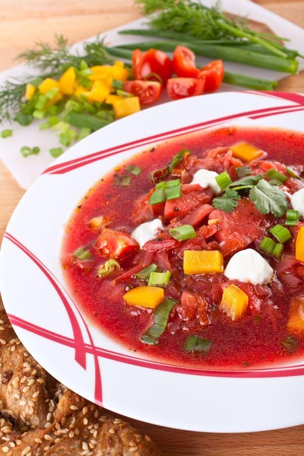 甜菜红色汤蔬菜 图库摄影