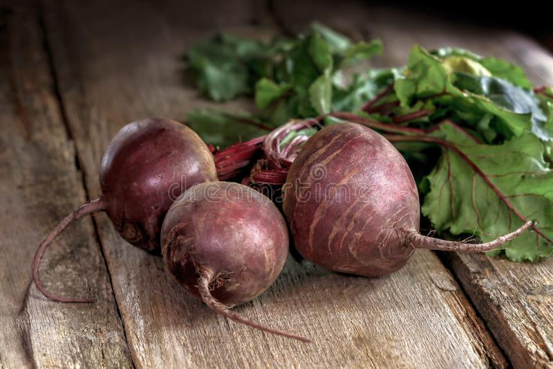 甜菜,在灰色木背景的甜菜根束 库存图片