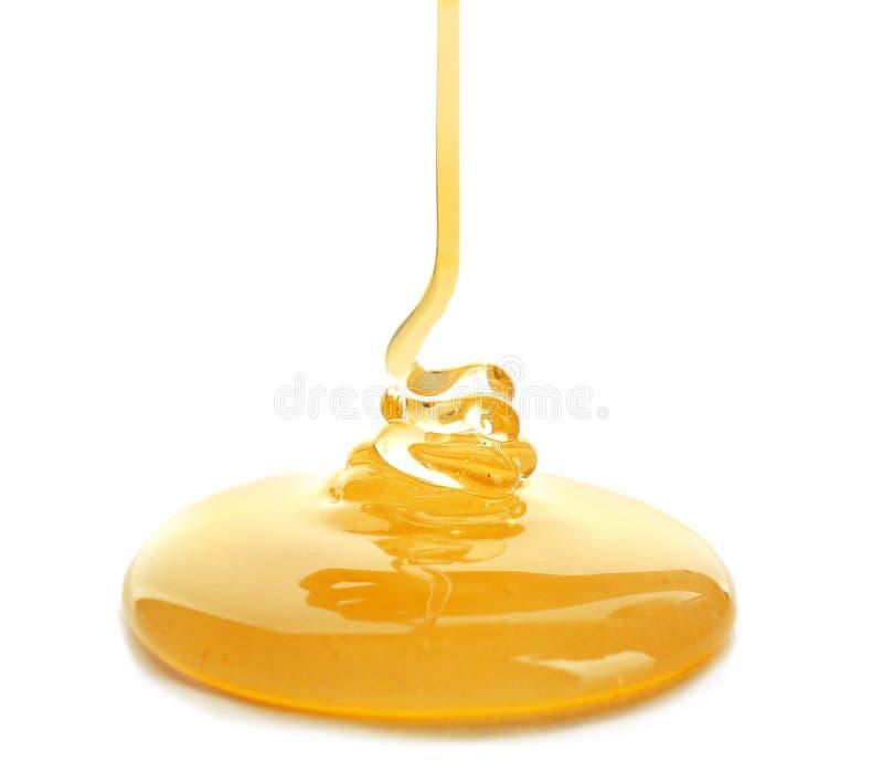 甜蜂蜜倾吐 免版税图库摄影