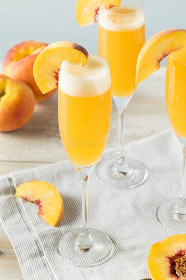 甜起泡的桃子Bellini含羞草 图库摄影
