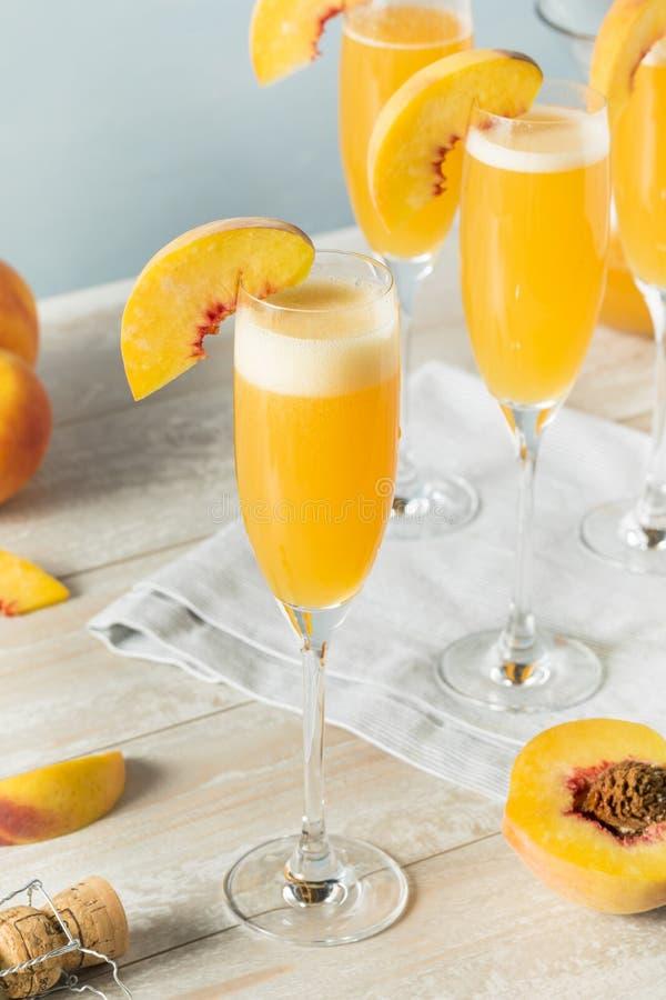甜起泡的桃子Bellini含羞草 免版税库存图片