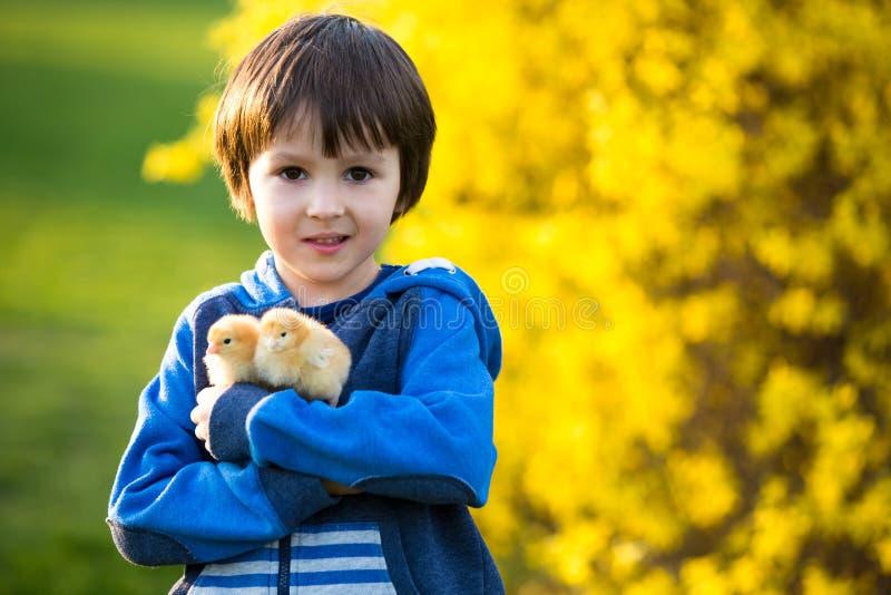 甜逗人喜爱的孩子,学龄前男孩,使用与一点新出生的池氏 免版税图库摄影