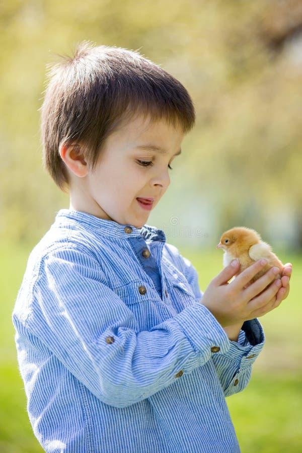 甜逗人喜爱的孩子,学龄前男孩,使用与一点新出生的池氏 库存图片