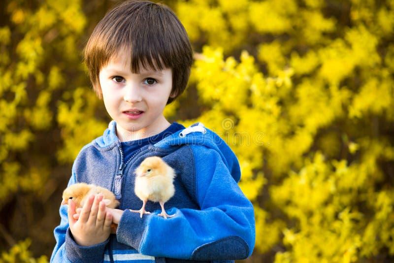 甜逗人喜爱的孩子,学龄前男孩,使用与一点新出生的池氏 免版税库存图片