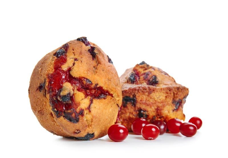 甜鲜美松饼用在白色背景的蔓越桔 库存图片