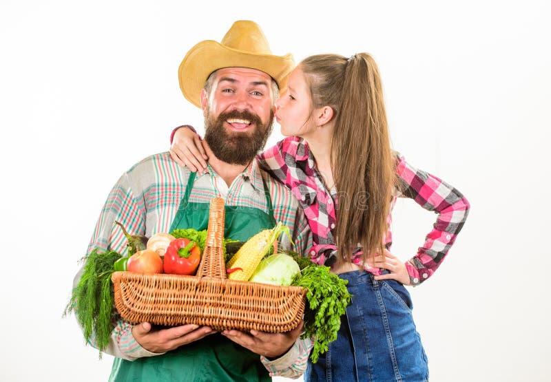 生农夫或花匠有女儿举行篮子收获菜的 从事园艺农夫家庭本地出产的收获和 免版税库存照片