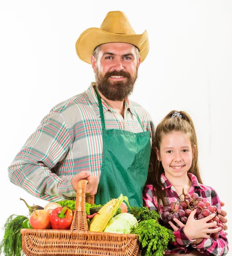 生农夫或花匠有女儿举行篮子收获菜的 从事园艺和收获 有机家庭的农场 图库摄影