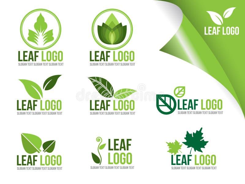 生态商标标志的汇集,有机绿色叶子传染媒介设计 皇族释放例证