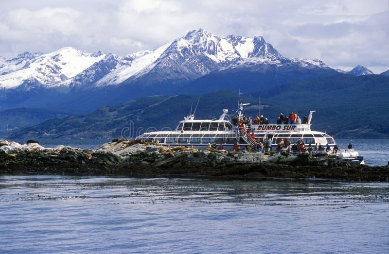 生态旅游小船和南部的海狮临近小猎犬海峡并且跨接海岛,乌斯怀亚,南阿根廷 库存照片