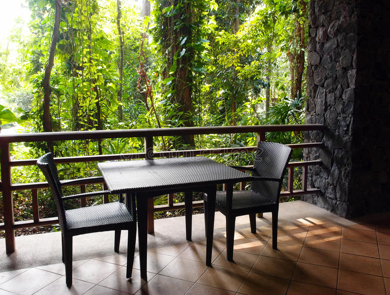 生态旅游手段露台有自然密林视图 库存图片