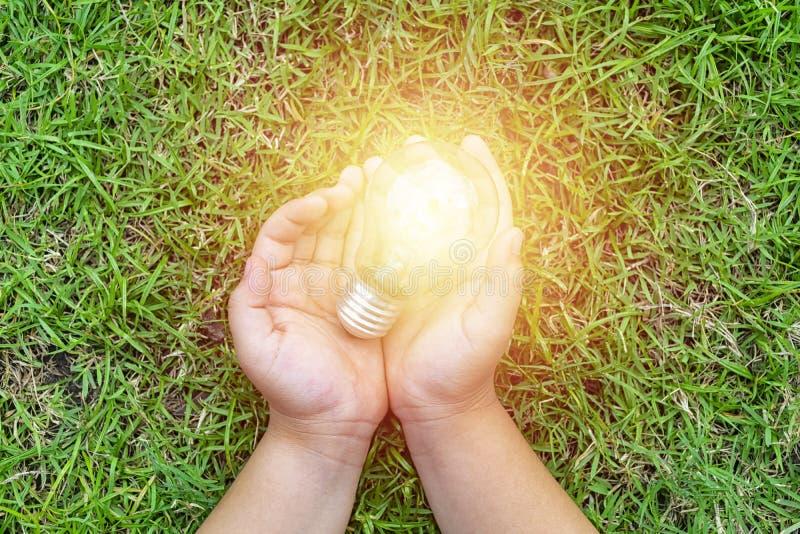 生态能量概念 电力对生活是根本的 免版税库存照片