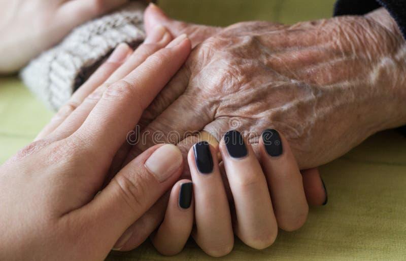 Download 生成 库存图片. 图片 包括有 居住, 成熟, 被扣紧的, 祖父项, 龙舌兰, 现有量, 产生, 孙女, 人力 - 72353123