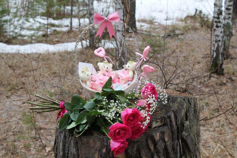 生日礼物,春日在森林里 免版税库存图片