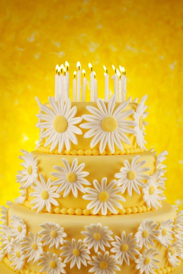 生日蛋糕雏菊 库存照片