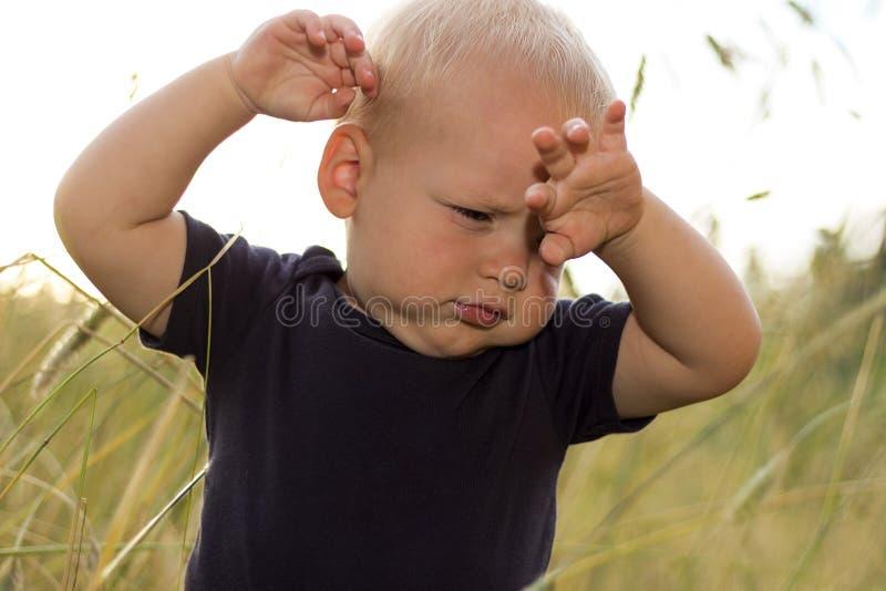 生气小孩在麦田站立在日落 库存图片
