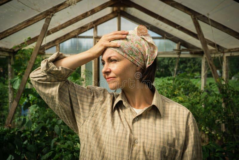 生气的疲乏的妇女花匠身分照片在西红柿的自温室 免版税图库摄影