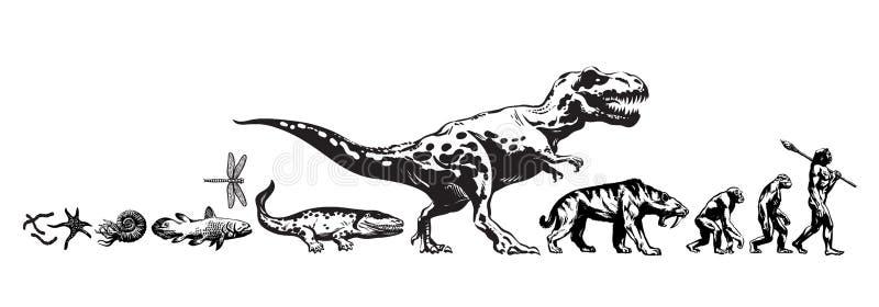 生活的历史地球上的 演变,恐龙,军刀齿状的老虎,陷下的猴子时间安排从史前动物的 向量例证