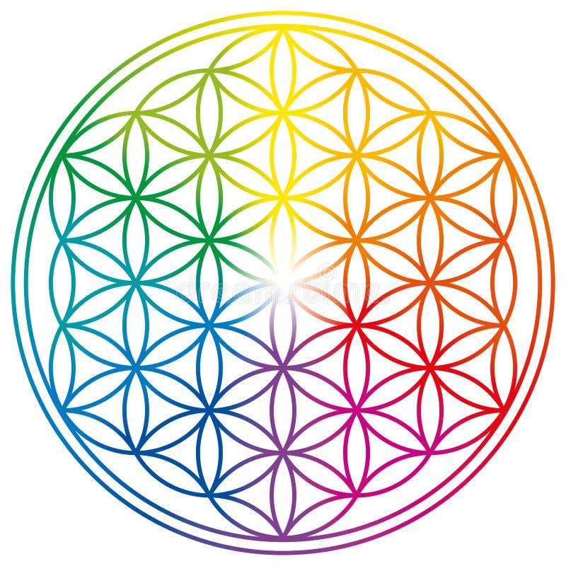 生活花在彩虹颜色的 库存例证