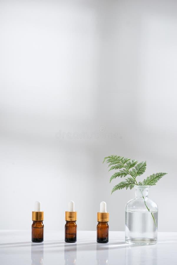 生物实验室玻璃器皿和空白的化妆瓶容器有草本花成份的,包裹烙记的 自然 免版税库存照片