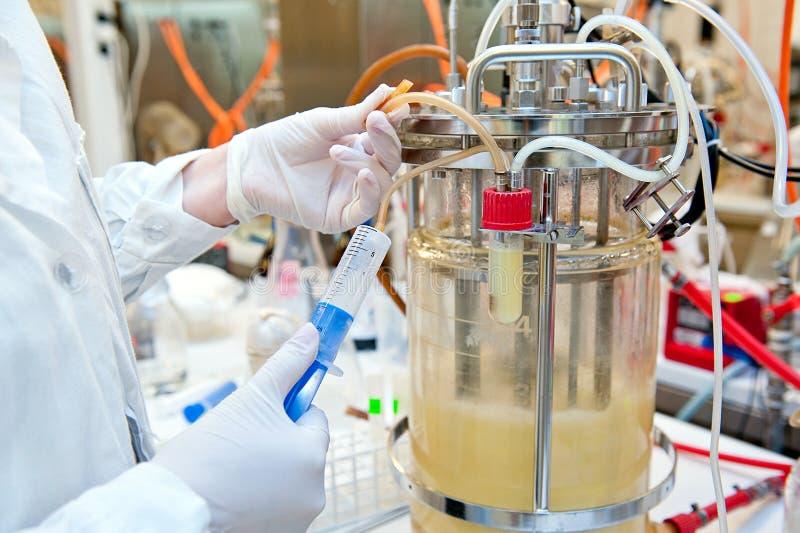 生物技术学的实验室 免版税库存图片