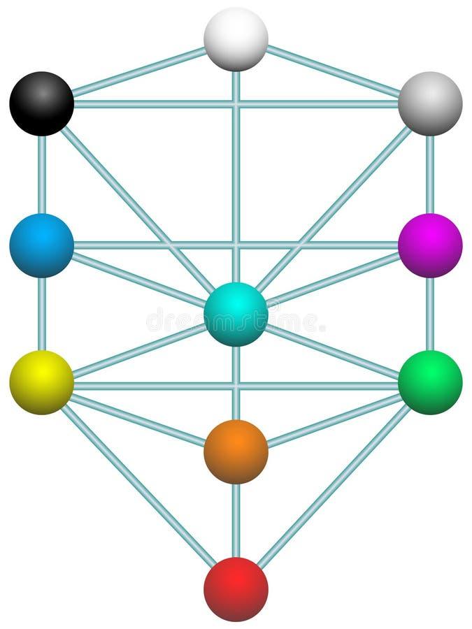 生物演化谱系图解 向量例证