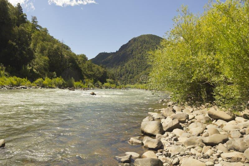 生物生物河,智利 图库摄影