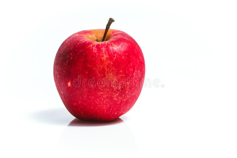生物苹果 库存照片