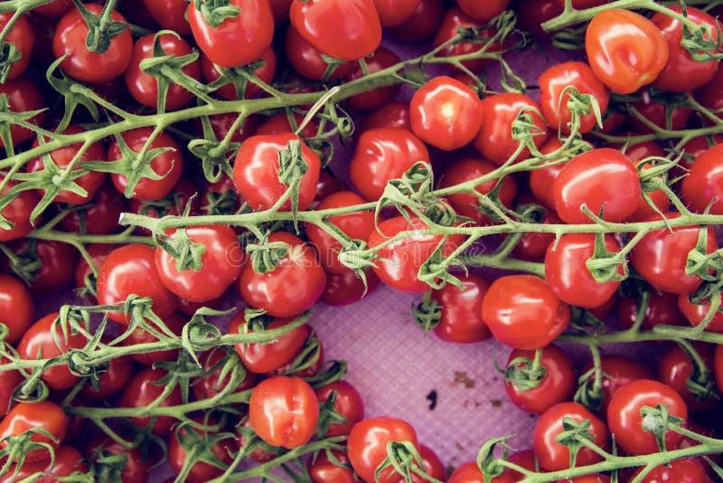 生物蕃茄农夫的市场 免版税库存图片