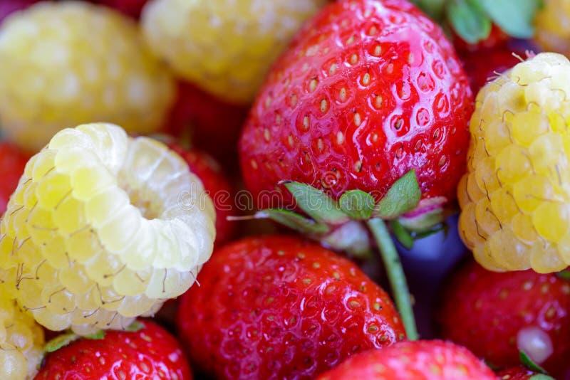生物黄色莓用红色草莓 关闭 免版税库存照片