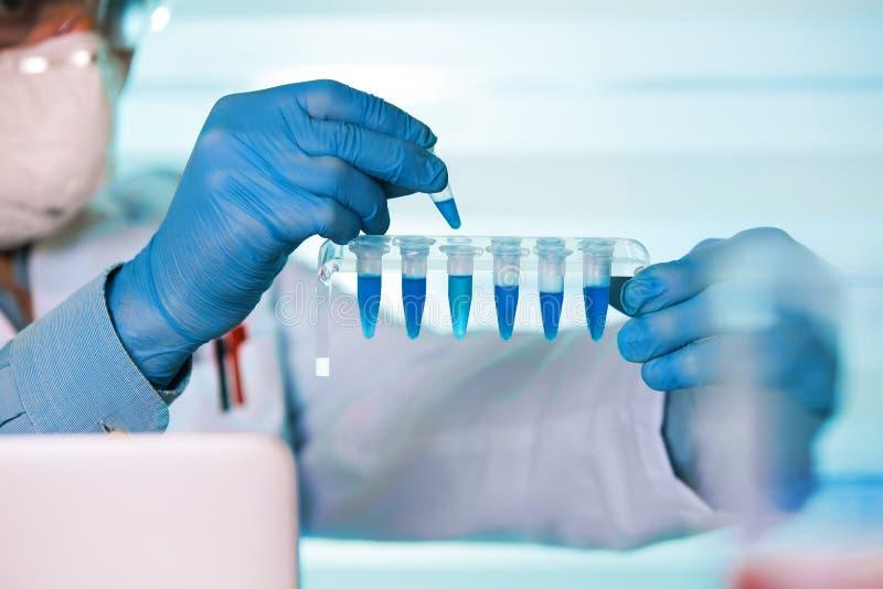 生物医学工程基因工作的手在实验室 库存图片