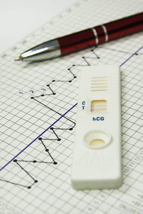 生育力图表。 妊娠试验。 Naprotechnology 图库摄影