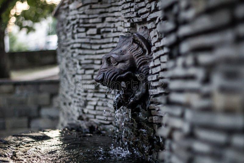 生铁喷泉'狮子的头' 免版税库存图片