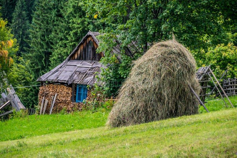 生锈的原木小屋 传统乌克兰村庄场面  库存照片