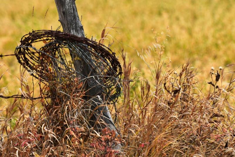 生锈的铁丝网和木篱芭岗位 库存照片