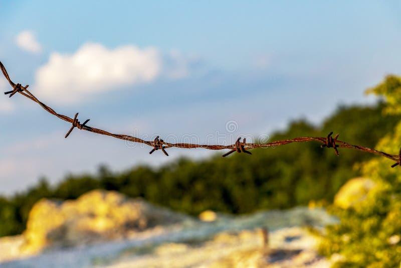 生锈的铁丝网特写镜头在自然被弄脏的背景的 免版税库存图片
