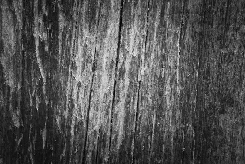 生锈的锌纹理 库存照片