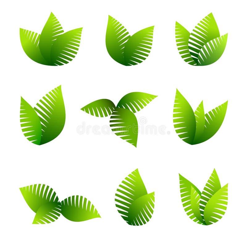 生长叶子标志 图库摄影