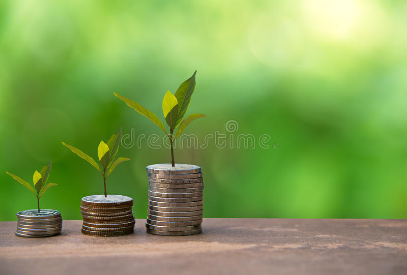 生长在储款硬币的植物 金钱硬币堆生长图表 免版税库存照片