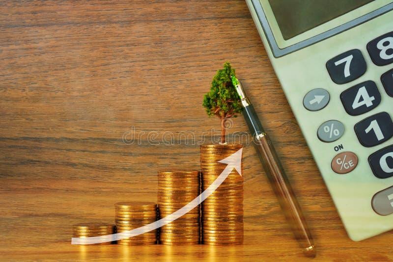 生长在堆的树与财政图表的金黄硬币,成长企业财务投资可持续发展概念 免版税库存图片