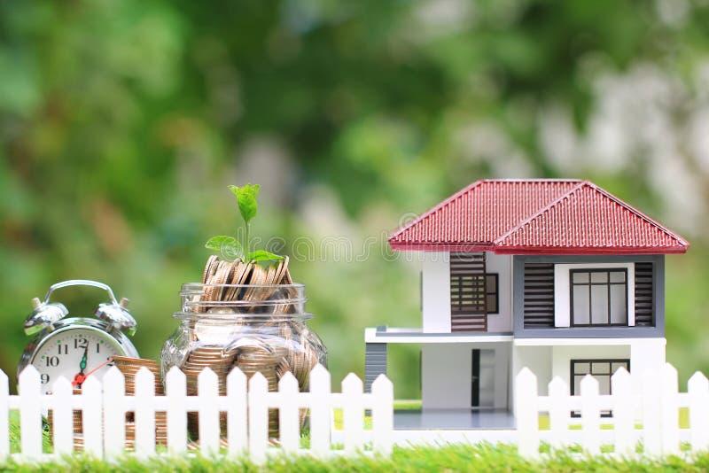 生长在玻璃瓶的硬币金钱的植物有自然绿色背景,利息和银行业务概念的式样房子的 库存图片