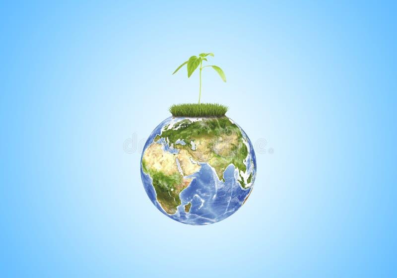 生长在蓝色背景的地球特写镜头的绿色新芽 这个图象的元素由美国航空航天局装备 皇族释放例证