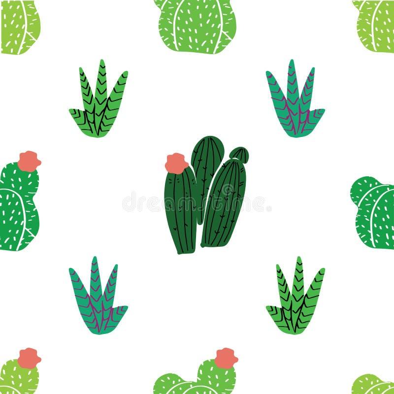 生长在florariums的多汁植物、仙人掌和其他植物 库存例证
