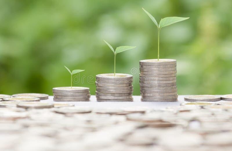 生长金钱概念可能为蒙太奇使用您的成功企业概念 库存照片