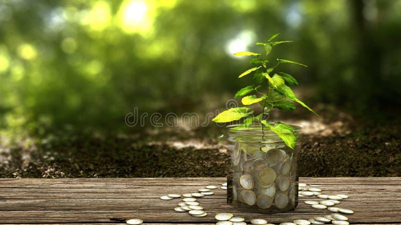 生长从金钱瓶子的植物 库存例证