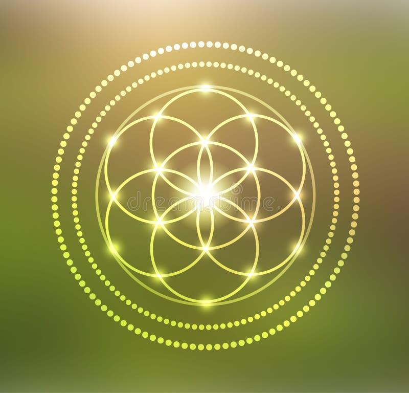 生活标志例证传染媒介发光的花  向量例证