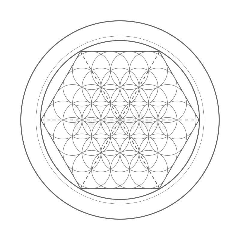 生活符号花 神圣的几何例证 库存例证