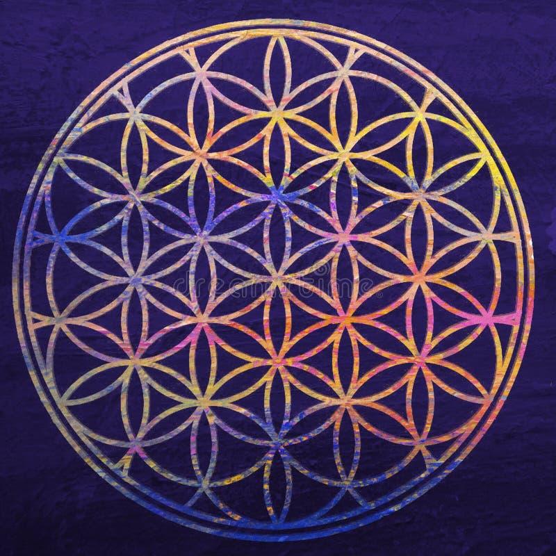 生活花 神圣的几何 开花莲花 坛场装饰品 神秘或精神标志 佛教chakra Geomtrical形象, 向量例证