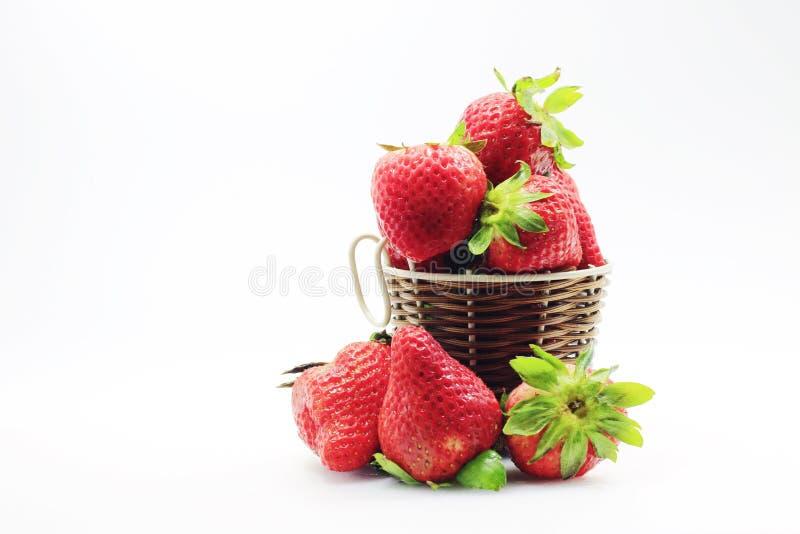 生活草莓果子  图库摄影