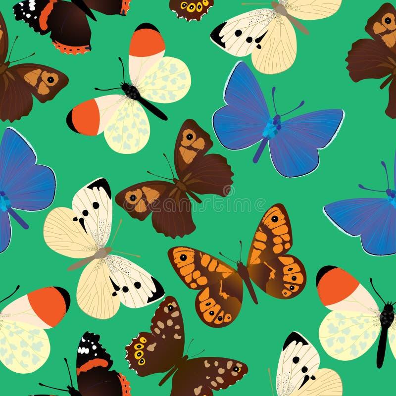 用不同的共同的蝴蝶的无缝的样式 库存例证